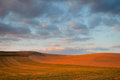 Cultivated weat fields at dusk la rioja spain Stock Photography