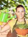 The cultivation of plants in pots Royalty Free Stock Image