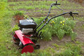 Cultivator Royalty Free Stock Photo