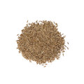Cumin Royalty Free Stock Photo