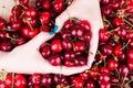 Cuore dalle mani su un fondo della ciliegia Fotografie Stock