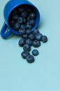 Cup of blueberries a knocked on the table Stock Photos