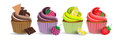 Cup cake chocolate blackberry lemon and strawberry Royalty Free Stock Photo