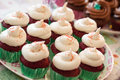 Cup cakes set food desert Royalty Free Stock Photos