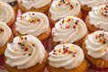 Cup cakes set food desert Stock Images
