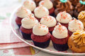 Cup cakes set food desert Royalty Free Stock Photo