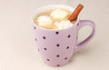 Cup of cappucino with marshmallows Stock Image