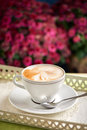 Cup of capuccino Royalty Free Stock Photo
