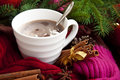 Cup Of Chocolate With Spices W...
