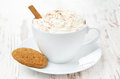 Cup of cocoa with cinnamon whipped cream and oatmeal cookies close up Stock Photography