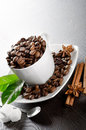 Cup of coffee beans Royalty Free Stock Photos