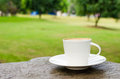 Cup of coffee on wooden table in garden Stock Photos