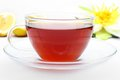 Cup of darjeeling tea fresh with citron Royalty Free Stock Images