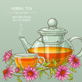 Cup or echinacea tea and teapot