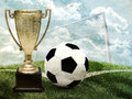 Cup with football and gates on green field Stock Photos