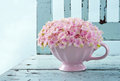 Cup Full Of Pink Hydrangea On ...