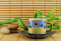Cup of green tea Royalty Free Stock Photo