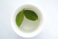 Cup of herbal tea with green leaf Stock Photos