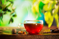 Cup of herbal tea over blurred nature green background Stock Images
