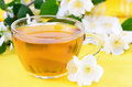 Cup of herbal tea w Royalty Free Stock Photo