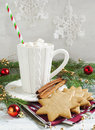 Cup of hot chocolate with marshmallow and Christmas cookies Royalty Free Stock Photo