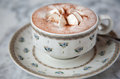 Cup of hot chocolate a porcelain with a topping whipped cream Stock Photo