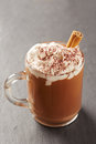 Cup of hot chocolate with whipped cream and cinnamon on slate board Stock Photo