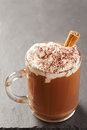 Cup of hot chocolate with whipped cream and cinnamon on slate board Stock Photography