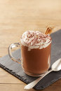 Cup of hot chocolate with whipped cream and cinnamon on slate board Stock Image