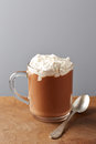Cup of hot chocolate with whipped cream on wooden table Royalty Free Stock Photo