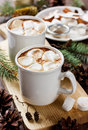 Cup of hot cocoa or chocolate with marshmallows on wooden background Royalty Free Stock Photo