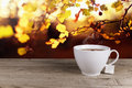 Cup of hot tea on background lanscape summer autumn Royalty Free Stock Images