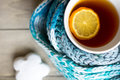 Cup of hot tea in the cold time winter with lemon and scarf Stock Images