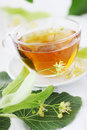Cup of lime tea with blossoms Stock Image