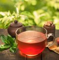 Cup of natural tea on background Royalty Free Stock Photography