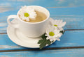 Cup of soothing chamomile tea on rustic wooden table background Stock Photo