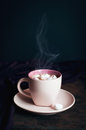 Cup of steaming hot chocolate with marshmallow on dark background Stock Image