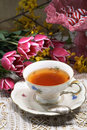 A cup of tea Royalty Free Stock Photos