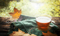 Cup of tea with autumn leaves and green napkin  on wooden window sill on nature background Royalty Free Stock Photo