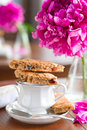 A cup of tea and biscuits Royalty Free Stock Photos
