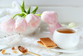 Cup of tea, biscuits and caramel sugar Royalty Free Stock Photo