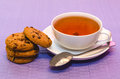 Cup tea cookies Royalty Free Stock Photos