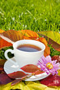 Cup of tea in fall garden Royalty Free Stock Photo
