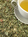 Cup of tea on herbs Stock Photos