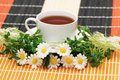 Cup of tea with herbs  and dai Royalty Free Stock Photo