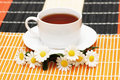 Cup of tea with herbs and dais Royalty Free Stock Photo