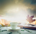 Cup of tea on a saucer with thyme, autumn leaves and open book on wooden window sill on nature blured sky background Royalty Free Stock Photo