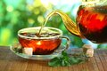 Cup of tea and teapot. Royalty Free Stock Photo