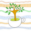 Cup tree Stock Photography
