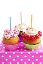 Cupcake birthday Stock Image